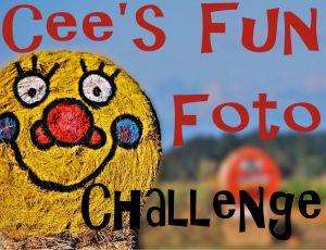 cees-fun-foto1