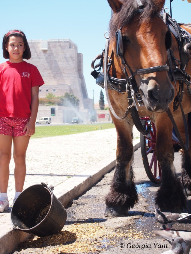 Belem horse and girl