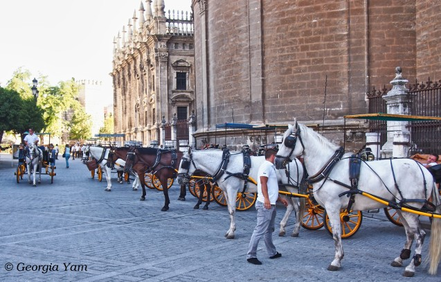 Giralda horse carriages