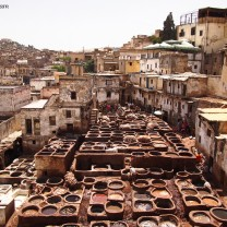 August: a month of travel and new experiences, summed up by this Tannery in Fes, Morocco