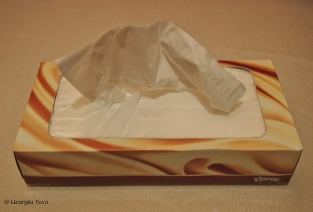 soft tissues