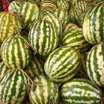 Watermelon, Fes, Morocco