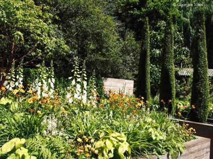The APCO Artisan Garden