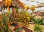 Jamaica Horticultural Society