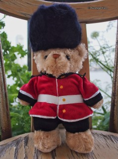 Sergeant Bear
