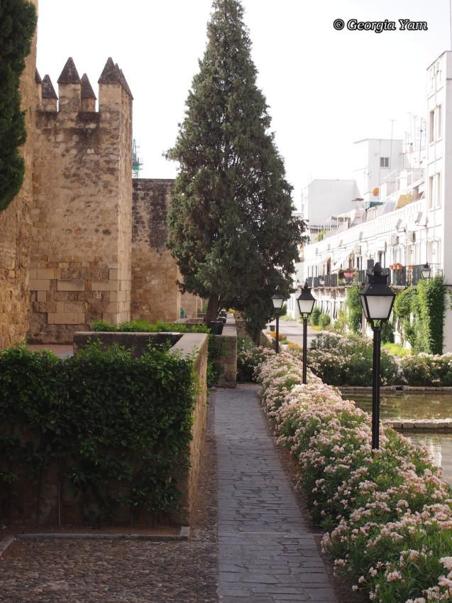 wall walk
