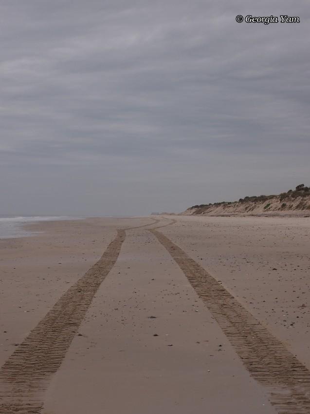 beach tyre tracks