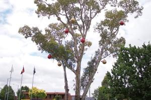 gum tree baubles