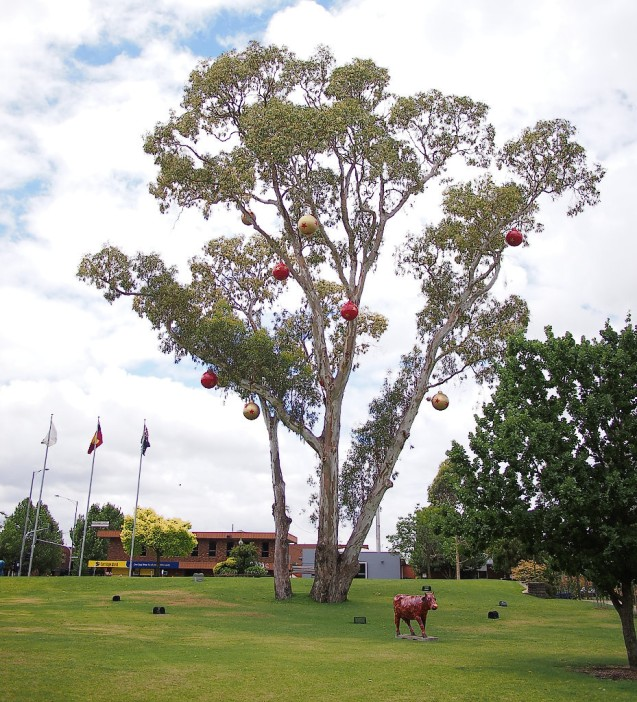 gum tree baubles