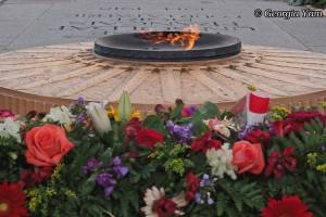 war memorial fire