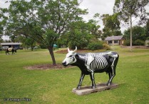 skeleton cow moooving art