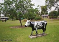 skeleton cow moooving art