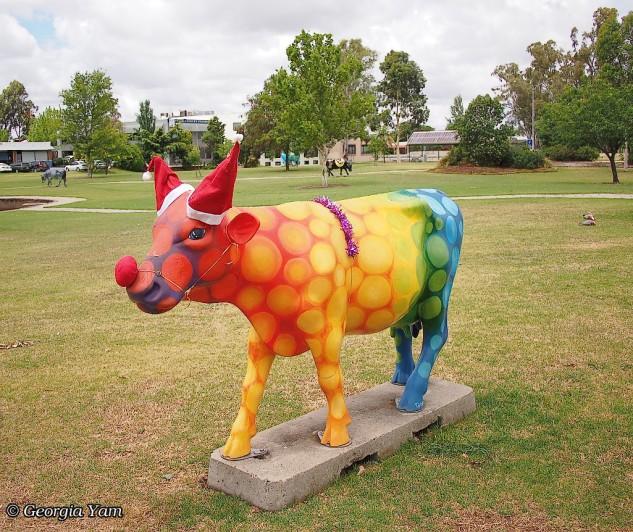 rainbow cow moooving art