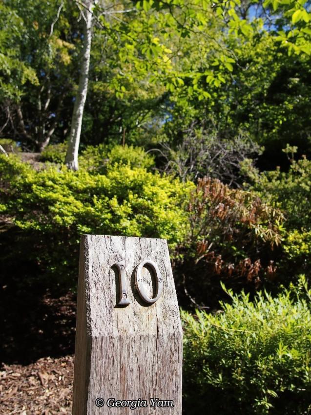 number 10 marker