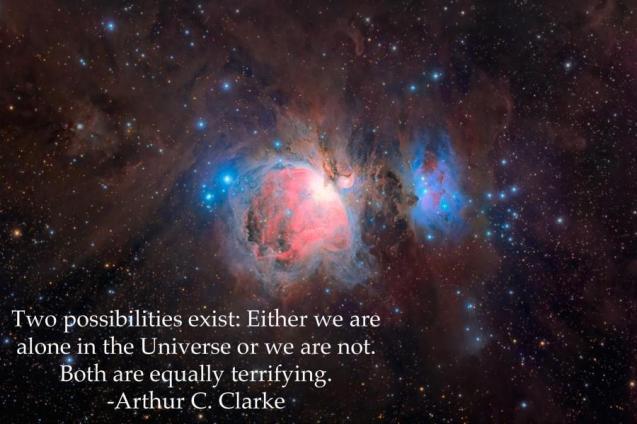 alone universe quote