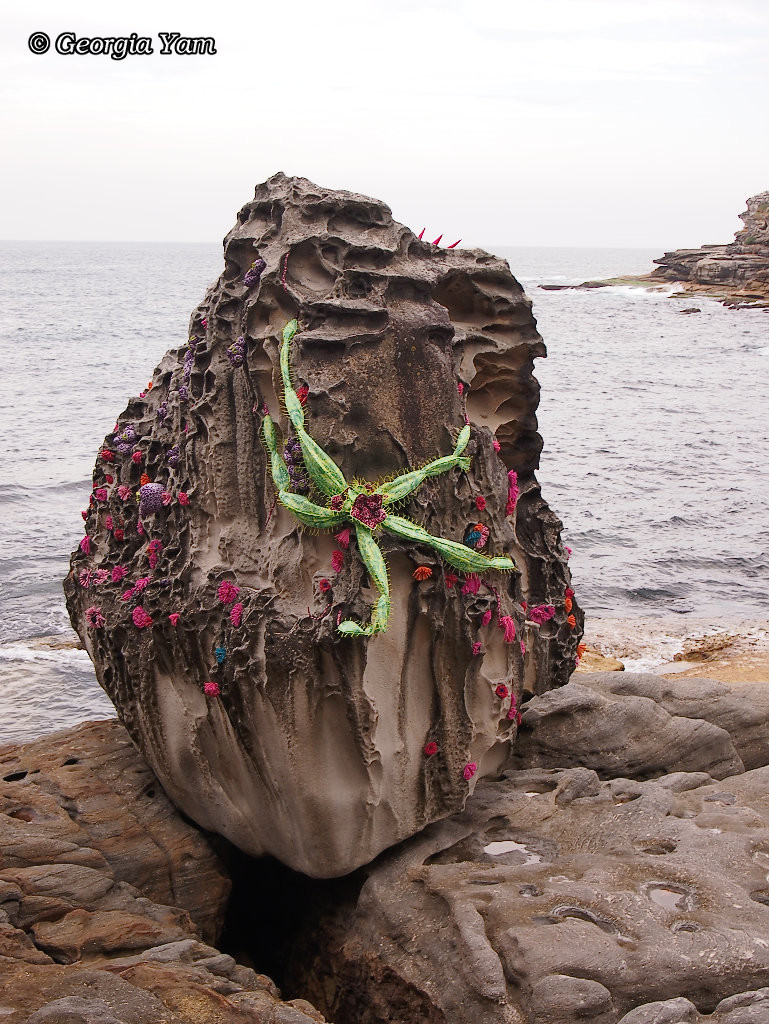 decorated rock