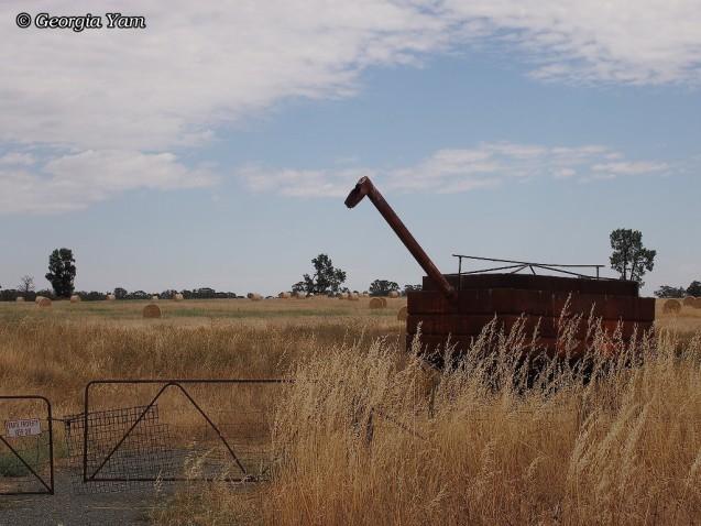 mystery machine Parkes field