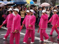 pink ladies parade