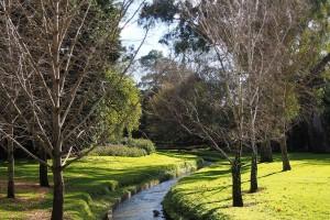 Adelaide Botanic Gardens river