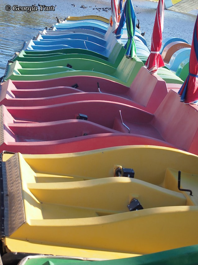 vibrant colours paddleboats