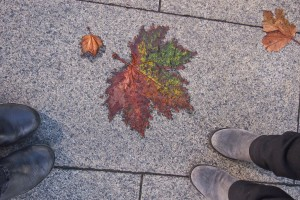 Autumn leaves feet