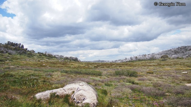 Perisher Valley summer