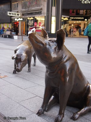 Rundle Mall Pgs