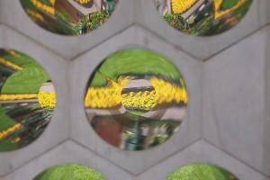 Aeolus abstract