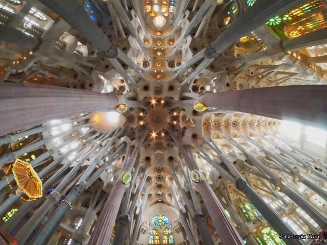 Sagrada Familia ceiling wide angle