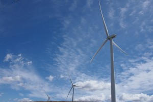 arid earth under wind turbines