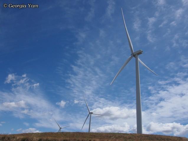 arid earth under wind turbines