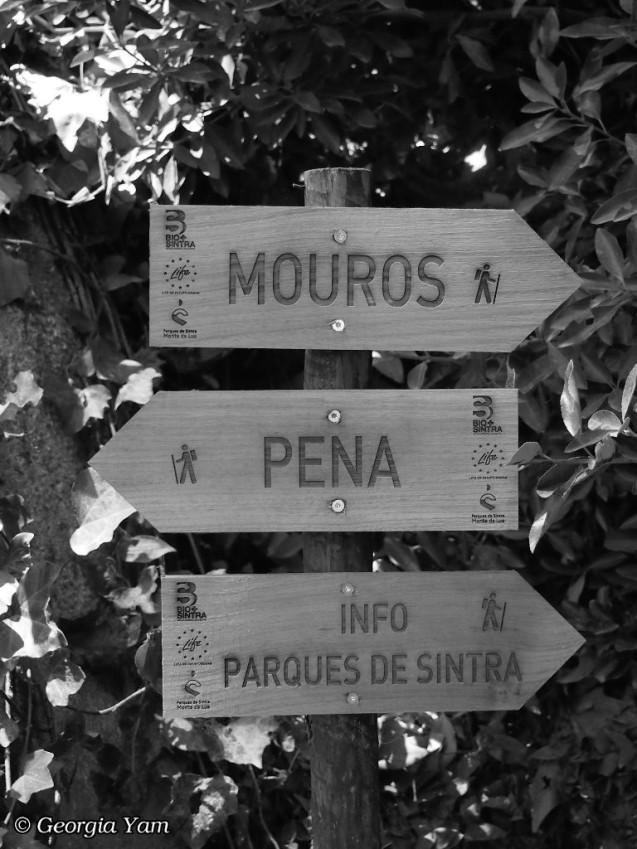 Mouros & Pena signs B&W