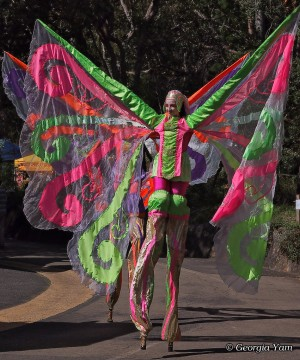 giant butterfly stilt walker